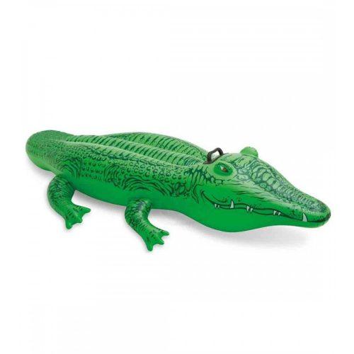 Krokodil lovagló 168 cm