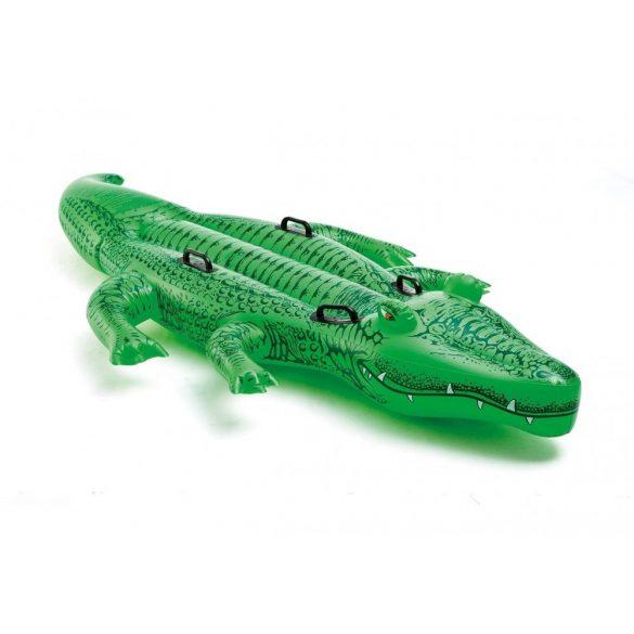Krokodil nagy 203 cm